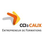 CCICAUX appart rouen